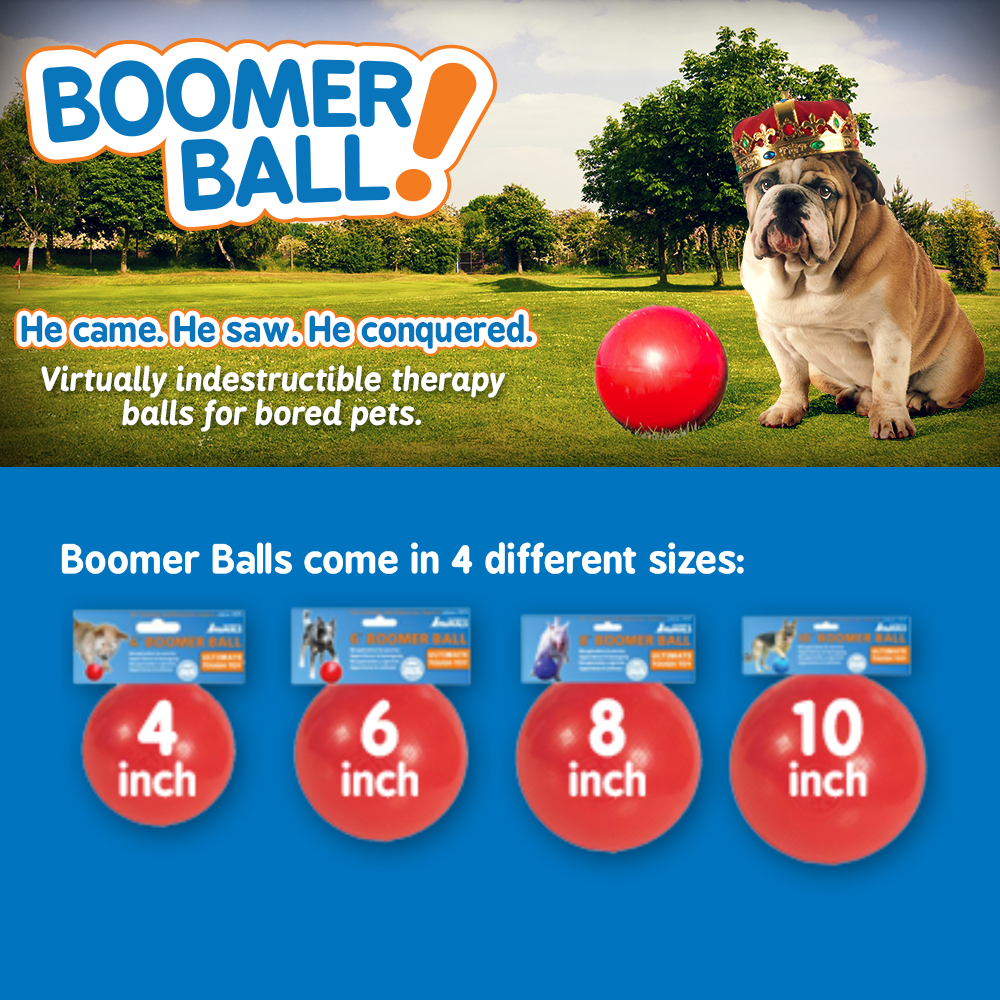 Boomer Ball Suitable Most Dog Breeds Therapeutic Toy ...